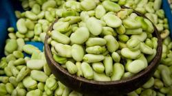 Exportaciones de habas sumaron US$ 936 mil en el primer bimestre de 2020