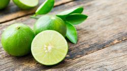 Exportaciones de limón crecen 16% en volumen
