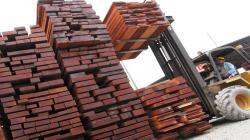 Exportaciones de madera peruana alcanzaron los US$ 77 millones entre enero y agosto del 2021