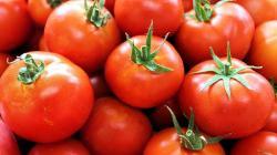 Exportaciones españolas de frutas y hortalizas frescas crecen en valor 9% entre enero y septiembre de 2020