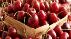 Exportaciones frutícolas de Chile disminuyen 17% en valor durante primer trimestre del año