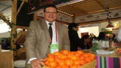Exportaciones peruanas de cítricos en la presente campaña no llegarán a lo proyectado