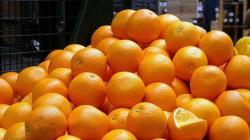 Exportaciones peruanas de naranja fresca crecieron 6% en volumen y 46% en valor en 2020