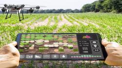 Facultad de Agronomía de la UNALM realizará el curso Innovaciones Agrícolas