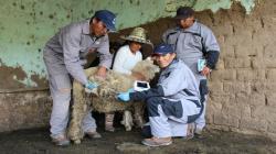 Firman convenio para potenciar el agro en zonas altoandinas de Cusco