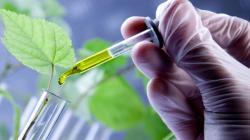 Herramientas biotecnológicas aplicadas a la biodiversidad potenciarían competitividad del país