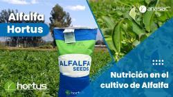 Hortus: Las claves para una adecuada fertilización de la alfalfa