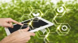 IICA y FDA desarrollarán plataformas digitales para capacitar en ley FSMA sobre inocuidad de alimentos