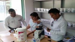 Implementan ocho microcentros de operaciones para erradicar mosca de la fruta en Piura