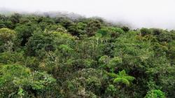 Incorporan 16 ecosistemas identificados en Pasco en Lista Sectorial de Ecosistemas Frágiles