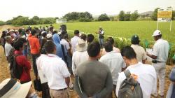 INIA crea dos nuevas Estaciones Experimentales Agrarias en Huánuco y La Libertad