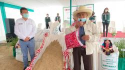 INIA desarrolla primer superpasto ryegrass con alta calidad genética para alimentación de ganado