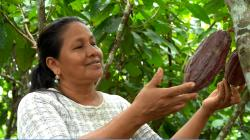 INIA lanza Premio INIA-CARAL 2020 para reconocer proyectos de innovación que contribuyan a la agricultura familiar