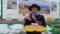 INIA libera dos nuevas variedades de trigo con mayor rendimiento y calidad que mejorarán competitividad agraria
