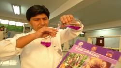 Investigación peruana confirma que maíz morado previene cáncer de colon