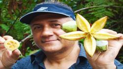 Investigarán especies de flora silvestre de Perú para identificar fármacos naturales