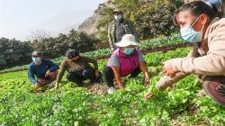 Junta de Usuarios de Riego: Segunda reforma agraria muestra voluntad política a favor del sector