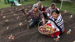 La agricultura familiar y su aporte a la agrobiodiversidad