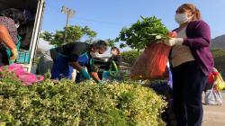 """""""La Tierra Prometida es el lugar ideal para comerciantes minoristas de La Parada"""""""