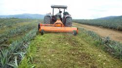 Litec realizará charla técnica online sobre beneficios y ventajas de trituradoras según terrenos de cultivo