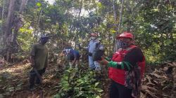 Loreto: comunidades nativas reforestarán con árboles de Palo Rosa zona en frontera con Colombia