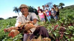 """Mañana lanzarán """"Decenio de Agricultura Familiar 2019-2028"""""""