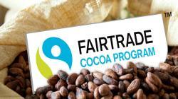 Más de 300 cooperativas agrarias en riesgo de parálisis comercial y financiamiento por vencimiento de poderes de dirigentes