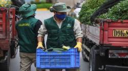 Mercado Mayorista de Lima dona 10 toneladas de alimentos a animales del Parque de las Leyendas