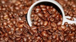 Mercado mundial del café volverá a ver déficit esta temporada