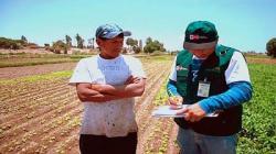 Midagri iniciará en las próximas semanas la Encuesta Nacional Agraria