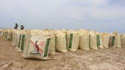 Minagri comercializó más de 37 mil sacos de guano de isla a productores de cacao