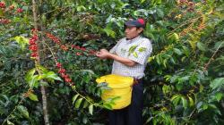 Minagri lanza hoy Primer Encuentro Regional Amazónico
