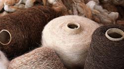 Minagri y regiones impulsarán el mercado interno de fibra de alpaca