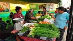 Ministerio de Agricultura organiza mercados itinerantes para atender a consumidores
