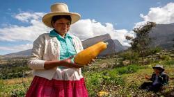 Mujeres representan más del 40% de la fuerza laboral agrícola en los países en desarrollo