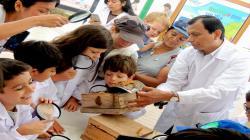 Municipalidad de Miraflores aprueba ordenanza que promueve la conservación de las abejas y otros polinizadores