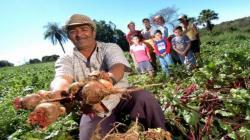 """""""Nuestra agricultura familiar, abandonada a su suerte por tanto tiempo, se convierte hoy en un bastión de nuestra economía para enfrentar la crisis por el coronavirus"""""""