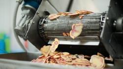 Nuevas semillas se alistan para mejorar cuatro productos de agroexportación