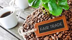 Organizan Concurso de Taza Dorada para consolidar liderazgo peruano en ventas de café de comercio justo