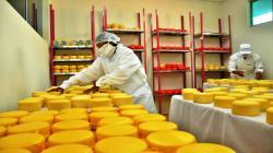 Perú duplicó consumo per cápita de queso en los últimos diez años