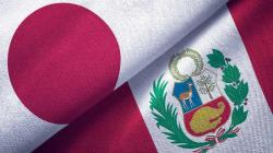 Perú entra al Top 10 de proveedores de fruta en Japón