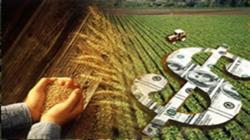Perú y otros 18 miembros de la OMC se comprometen a reducir subsidios agrícolas en 50% al 2030
