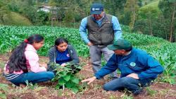 Piura: investigadores trabajan sobre nuevas propiedades de frutos nativos para promover reforestación y biocomercio