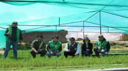 Plantarán 1 millón de árboles en Junín durante la campaña forestal 2019-2020