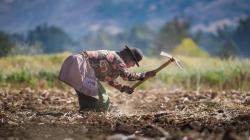 Política General de Gobierno 2021-2026 sienta las bases de la denominada Segunda Reforma Agraria inclusiva