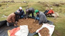 Preservar la biodiversidad y fortalecer la agricultura familiar son actividades complementarias y claves para el país