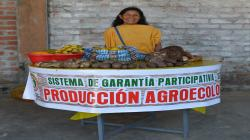 Productores orgánicos certificados con SGP pasarían de 30 mil a más de medio millón en tres años