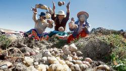 Promulgan Ley de compras estatales de alimentos a agricultura familiar