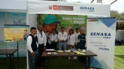 Crearán programa de erradicación de mosca de la fruta para Piura