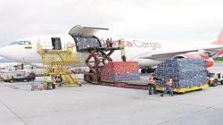 Restricción de vuelos costaría US$ 115 millones a la agroindustria